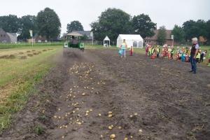 2019-08-29-Kindergarten-Kartoffel